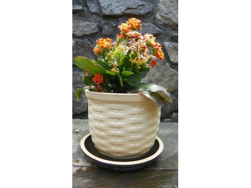Květník koš.Prům.18cm